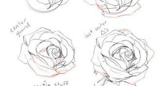 Эскизы рисунков карандашом для начинающих (31 фото)