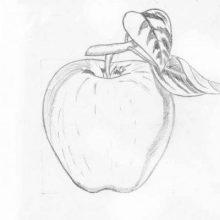 Рисунки на разную тему карандашом (33 фото)