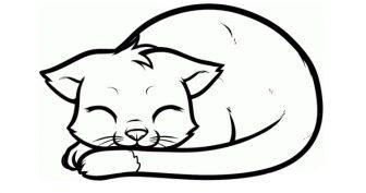 Рисунки котенка карандашом для детей (26 фото)