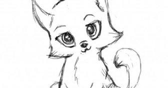 Рисунки животных для срисовки карандашом для начинающих (26 фото)