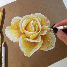 Реалистичные рисунки карандашом для срисовки (21 фото)