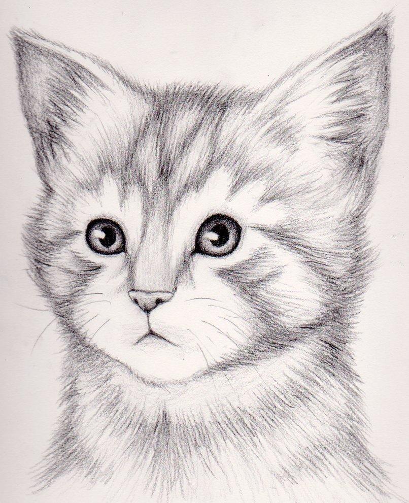 Картинки для рисования красивые и легкие