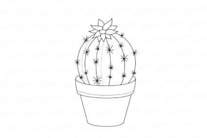 Рисунки растений карандашом для срисовки (35 фото ...