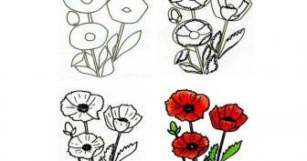 Рисунок карандашом для срисовки маки (16 фото)