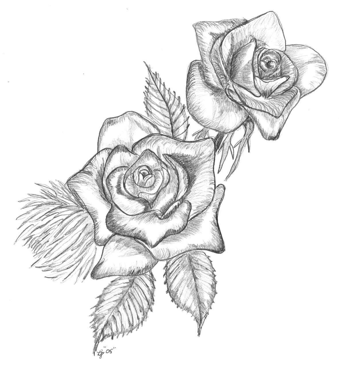 Рисунки цветов карандашом на открытку простые