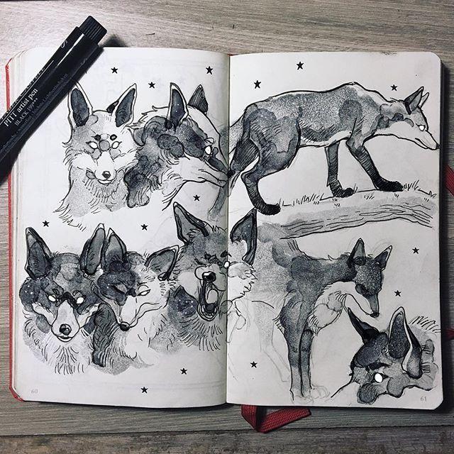 Картинки пастелью животные скетчбук