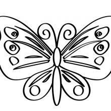 Рисунки для срисовки бабочки (28 фото)