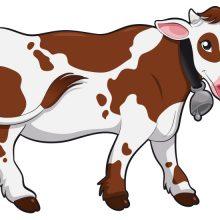Рисунок коровы карандашом для детей (27 фото)