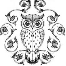 Рисунки совы карандашом для срисовки (35 фото)