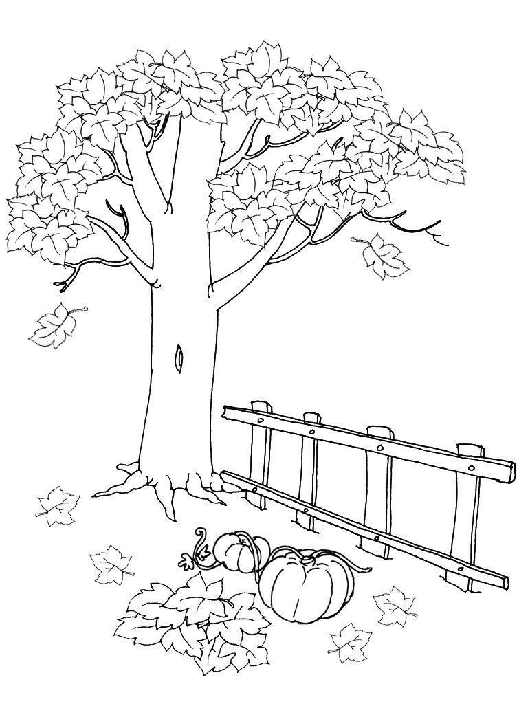Рисунок осени карандашом картинки