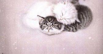 Рисунки котов для срисовки акриловыми красками (21 фото)