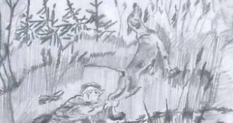 Рисунки к рассказу «Кладовая солнца» карандашом  (15 фото)