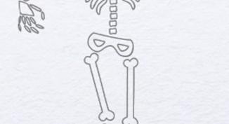Рисунки скелета карандашом для срисовки (22 фото)