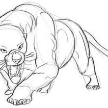Рисунки черная пантера карандашом поэтапно (25 фото)