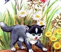 Рисунки к рассказу «Котенок» Льва Толстого карандашом (15 фото)