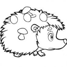 Рисунки для срисовки ежики (24 фото)