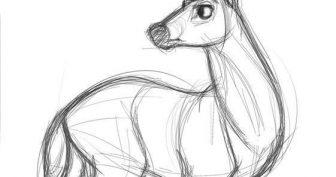 Милые рисунки идеи для срисовки (28 фото)