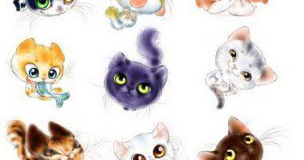 Рисунки котиков милых и няшных для срисовки (18 фото)