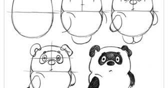 Картинки для срисовки животные для 11 лет (31 фото)