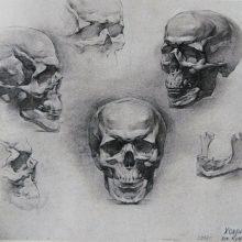 Рисунки черепа карандашом для начинающих (66 фото)
