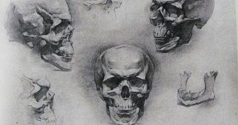 Рисунки черепа карандашом для начинающих (36 фото)