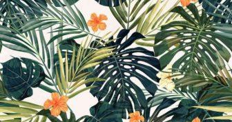 Рисунки для срисовки экзотических листьев (49 фото)
