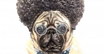 Рисунки Брайана мопса для срисовки (17 фото)