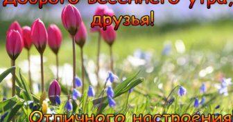Пожелания доброго весеннего дня (47 фото)
