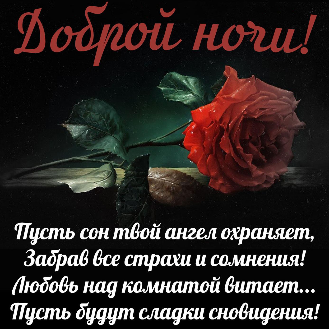 Стихи спокойной ночи любимой жене сладких снов и скучаю