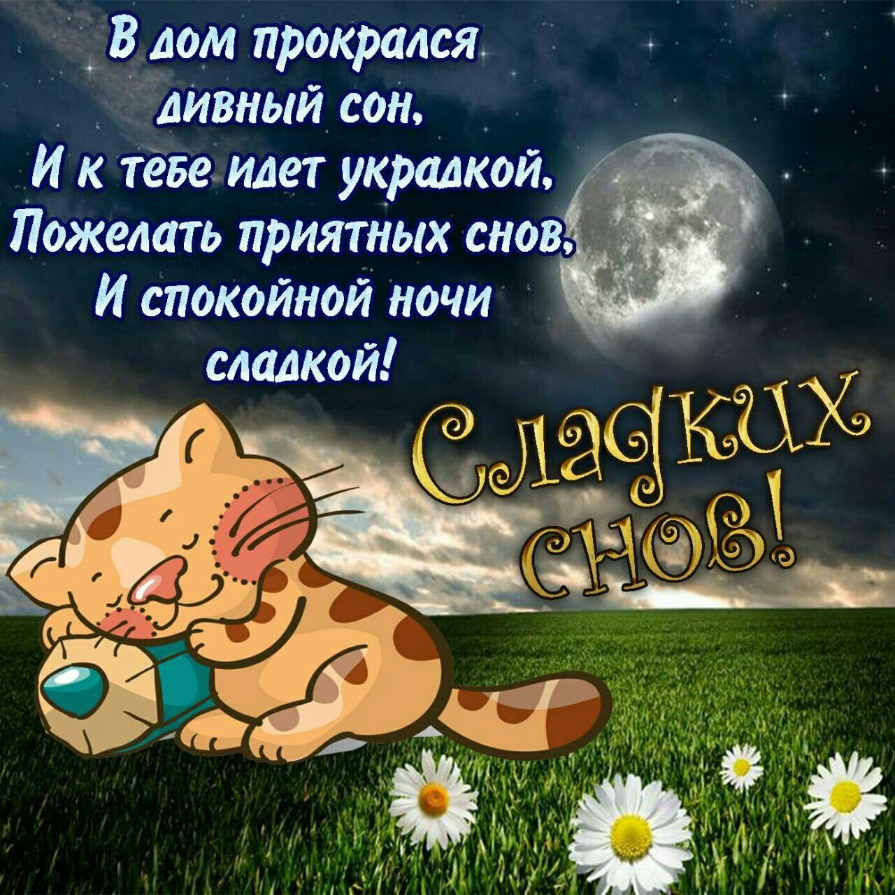 пожелание доброй ночи любимой в прозе построена