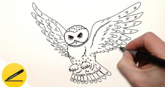 3d рисунки карандашом филин (15 фото)