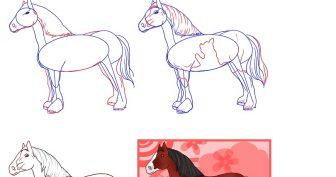 Картинки лошадей для срисовки (26 фото)