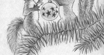 Рисунки карандашом для детей белка (24 фото)