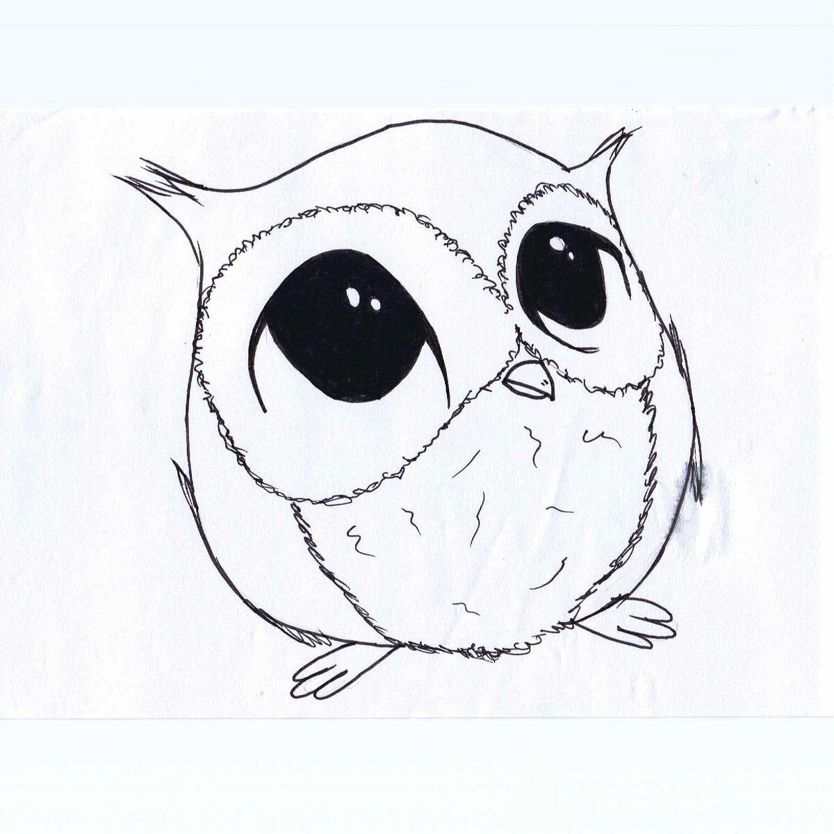 Картинки совы для срисовки