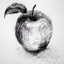 Рисунки карандашом со штриховкой (28 фото)