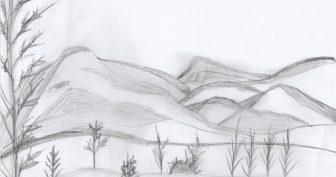 Рисунки природы простым карандашом (31 фото)