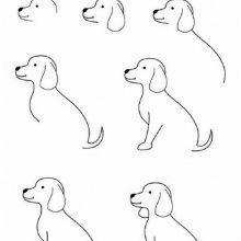 Рисунки карандашом поэтапно щенка (17 фото)