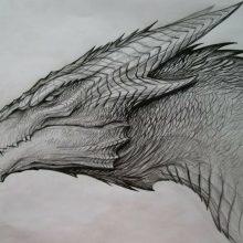 Черно-белые рисунки драконов карандашом (27 фото)