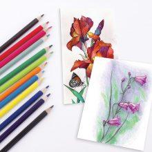 Легкие рисунки акварельными карандашами (29 фото)
