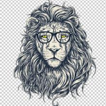 Рисунки льва карандашом для срисовки (19 фото)