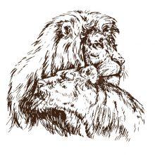 Рисунки карандашом лев и львица (27 фото)