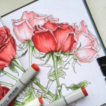 Рисунки для срисовки маркерами для начинающих (36 фото)