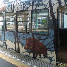 Невероятная раскраска поездов в Японии
