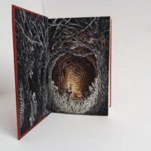 Новая жизнь старых книг (11 фото)