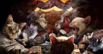 Курящие коты