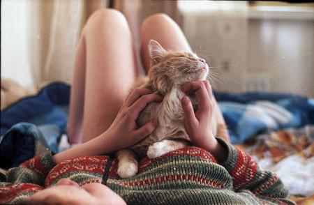 cats-christmas-jumper-girl-kitty-legs-sweater-Favim.com-49358