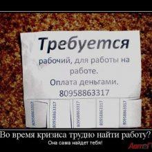 Работа или Job! (14 фото)