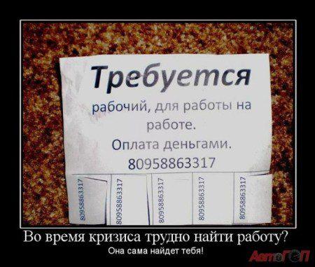 rabota-dlya-raboty_IMG1xdUOq_image