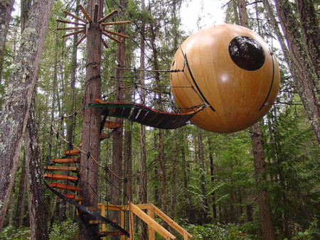 treehouse1a
