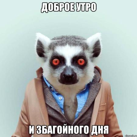 ukurennyy-lemur_29477899_orig_